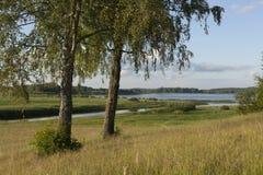 Paisajes naturales en un lugar histórico Pushkinskiye sangriento de Pskov, Rusia Imágenes de archivo libres de regalías