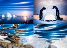 Paisajes polares reflejados en agua Imagenes de archivo