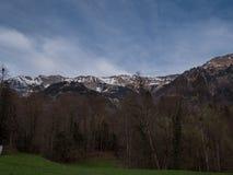 Paisajes suizos hermosos con la hierba verde de las monta?as de la nieve foto de archivo libre de regalías