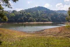 Paisajes y waterscapes escénicos del parque nacional de Periyar, Kerala, la India foto de archivo