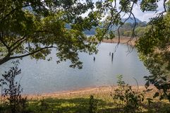 Paisajes y waterscapes escénicos del parque nacional de Periyar, Kerala, la India imagen de archivo