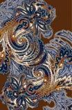 paisley западный Стоковое Фото