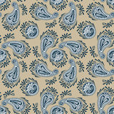 Paisley de luxe sans couture Photo stock