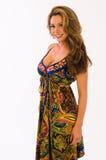 Paisley dress Stock Image