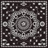 Paisley and Floral Pattern. Paisley and Floral Retro Geometric Pattern Royalty Free Stock Photography