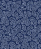 Paisley illustration pattern Royalty Free Stock Photography