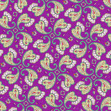 Paisley pattern background Stock Photos