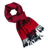 Paisley pattern cashmere scarf Royalty Free Stock Image