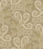Paisley pattern with figured gray frame Royalty Free Stock Photo