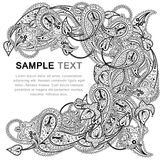 Paisley pattern with frame Stock Photo