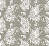 Paisley seamless fancy background Royalty Free Stock Photography