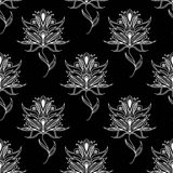 Paisley seamless floral pattern Stock Photography
