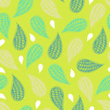 Paisley vector seamless pattern Royalty Free Stock Images