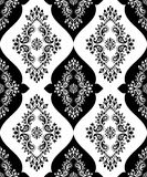 Paisley vector seamless Royalty Free Stock Photography