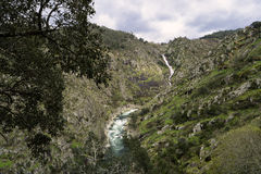 Paiva river Royalty Free Stock Photo