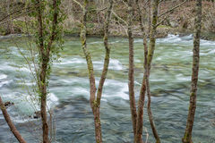 Paiva river Royalty Free Stock Photos