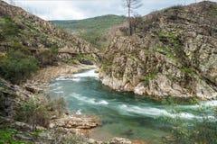 Paiva river stock photo