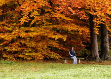 Paix d'automne Image libre de droits