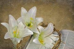 Paix de Pâques Photos libres de droits