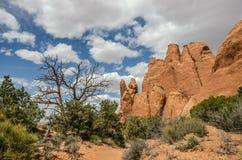 Paix en parc national de voûtes Image stock