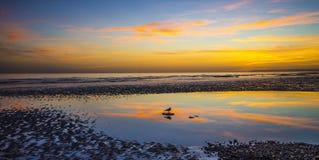 Paix et tranquilité parfaites - en observant le coucher du soleil au-dessus de Bexhill échouez à marée basse images stock