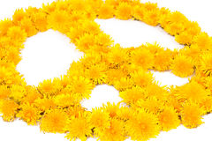 Paix, symboles de fleur Image libre de droits