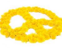 Paix, symboles de fleur Photos libres de droits