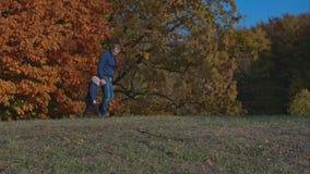 Paizinho que guarda o filho pela mão e pelas caminhadas no parque vídeos de arquivo