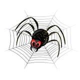 pająk śliczna sieć Zdjęcie Royalty Free