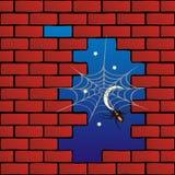 pająk ceglana ściana Ilustracji