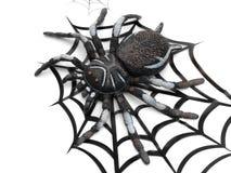 pająk rysunkowa sfałszowana ogromna sieć Fotografia Stock