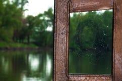 Pająk sieć na drewnianym okno obrazy stock