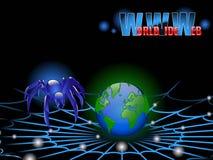 pająka sieci szeroki świat Obrazy Stock