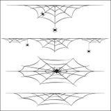 Pająki i pajęczyna na białym tle Zdjęcie Stock