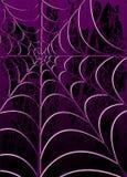 pajęczynę Zdjęcie Royalty Free