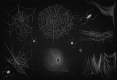 Pajęczyna ustawia odosobnionego na czarnym przejrzystym alfa tle Spiderweb dla Halloweenowego projekta Wysokiej jakości pająk sie royalty ilustracja