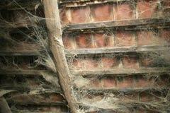 Pajęczyna w starym dachu fotografia stock