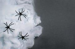 Pajęczyna z Czarnymi pająkami na Ciemnym tle, Halloweenowy symbol Obrazy Stock