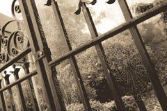 Pajęczyny brama sepiowa obrazy royalty free