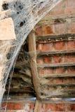 Pajęczyna w dachu Zdjęcia Stock