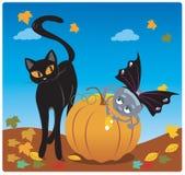 Pająk i kot ilustracji