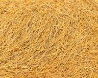 Paja del arroz Fotografía de archivo