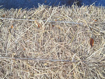 Paja en granja Foto de archivo libre de regalías