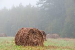 Pajar grande en un campo de niebla de la mañana Imágenes de archivo libres de regalías