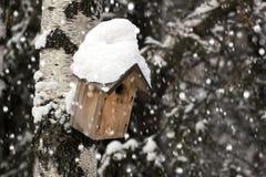 Pajarera atada a un árbol de abedul en un día nevoso Fotos de archivo libres de regalías
