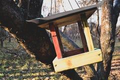Pajarera colorida en el árbol Nidal Imagen de archivo libre de regalías
