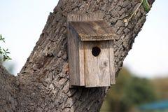 Pajarera de madera Foto de archivo