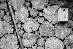 Pajarera de madera con el fondo de la pared del registro Imagenes de archivo