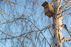 Pajarera de madera en el cielo brillante azul del árbol del invierno Imágenes de archivo libres de regalías