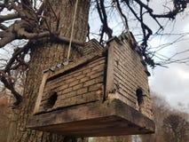 Pajarera de madera, en un árbol en el otoño, en el estilo de la casa Amsterdam, en Rusia en el estado Kuskovo fotos de archivo